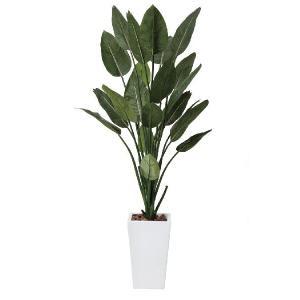 光触媒人工観葉植物 ストレチアW1.6m|hikarinorakuen
