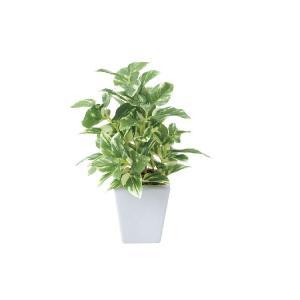 人工観葉植物 ポトスポット|hikarinorakuen