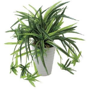 人工観葉植物 ドラセナ丸ポット|hikarinorakuen