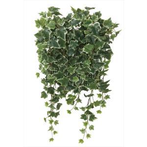 光触媒観葉植物 壁面緑化斑入アイビー|hikarinorakuen
