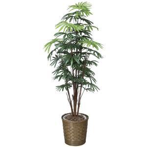 大型 人工観葉植物シュロチク 1.6m|hikarinorakuen