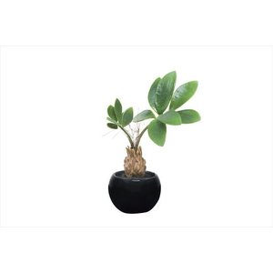 人工観葉植物 パキラインポット|hikarinorakuen