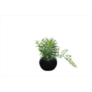 光触媒人工観葉植物 ミックスインポット|hikarinorakuen
