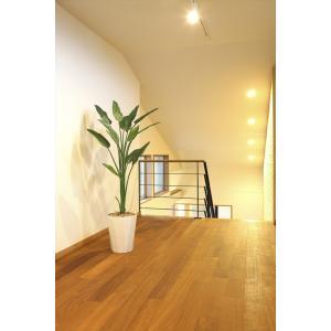 光触媒 人工観葉植物 ストレチア1.6m フェイクグリーン|hikarinorakuen