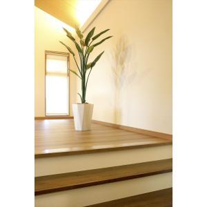 光触媒 人工観葉植物 ストレチア1.6m フェイクグリーン hikarinorakuen 03