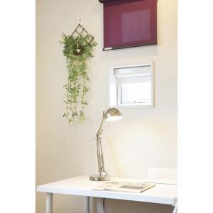 人工観葉植物 壁掛ジャスミン花付|hikarinorakuen