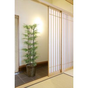 光触媒インテリアグリーン 黒竹 1.8m|hikarinorakuen