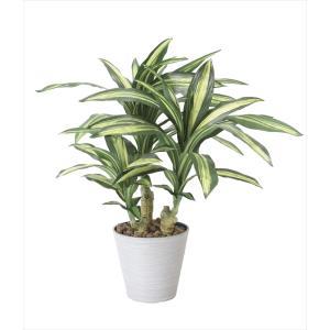 人工観葉植物 幸福の木 hikarinorakuen