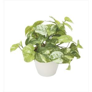 光触媒人工観葉植物 マーブルポトス hikarinorakuen