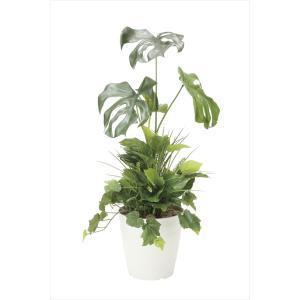 光触媒人工観葉植物 モンステラ90植栽付|hikarinorakuen