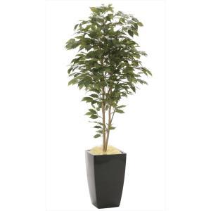 光触媒人工観葉植物 アーバンベンジャミン1.8m|hikarinorakuen