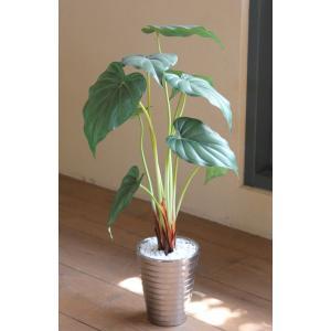 人工観葉植物 アロカシア|hikarinorakuen
