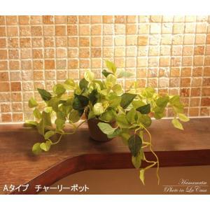 人工観葉植物 チャーリーポット|hikarinorakuen