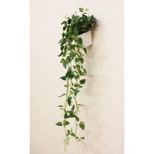 光触媒人工観葉植物 壁掛けフィロ|hikarinorakuen