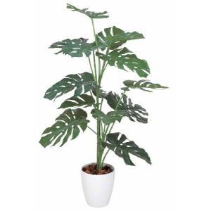 光触媒観葉植物 モンステラ1.2m hikarinorakuen
