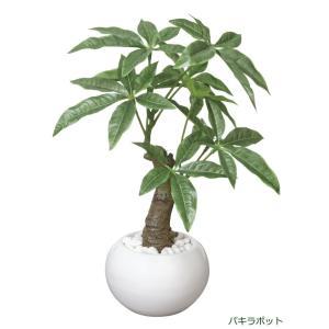 造花アレンジフラワー パキラポット|hikarinorakuen