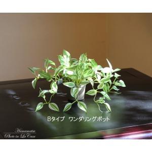 人工観葉植物 ワンダリングポット|hikarinorakuen