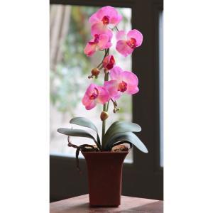 造花アレンジフラワー 胡蝶蘭ポット  ラベンダー|hikarinorakuen