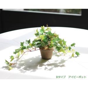 光触媒 観葉植物 アイビーポット|hikarinorakuen