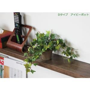 光触媒 観葉植物 アイビーポット hikarinorakuen 02