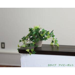 光触媒 観葉植物 アイビーポット hikarinorakuen 03