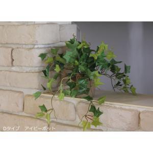 光触媒 観葉植物 アイビーポット hikarinorakuen 04