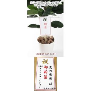 【光の楽園 フラワー&グリーンギフト】ギフト用 立札(立札のみの販売はしておりません)|hikarinorakuen