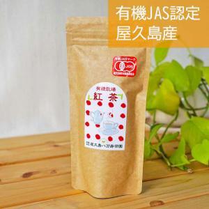 紅茶 茶葉 80g 屋久島 国産 無農薬 有機栽培|hikwsi-powata