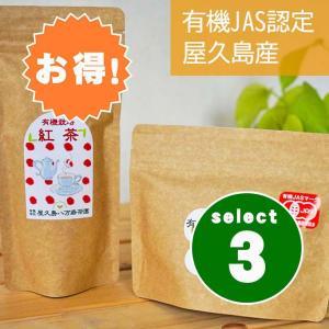 紅茶 ティーバッグ 茶葉 屋久島 国産 無農薬 有機栽培 選べる3個セット|hikwsi-powata