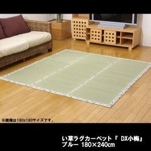 い草ラグカーペット 『DX小梅』 ブルー 約180×240cm(裏:不織布)|himalaya