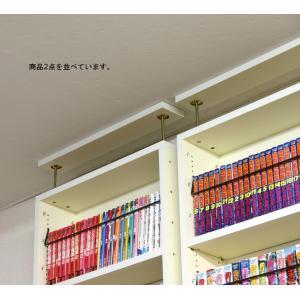 耐震天井つっぱり本棚 日本製 幅60cm奥行17cm|himalaya