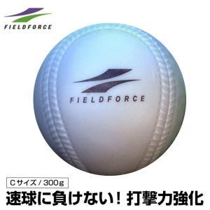 フィールドフォース FIELDFORCE 野球 ソフトボール トレーニングボール インパクトパワーボール Cサイズ 300g FIMP-680C  bb himaraya-bb