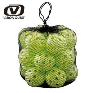 ビジョンクエスト VISION QUEST 野球 トレーニングボール バッティング練習ボール20P VQ-BB-20