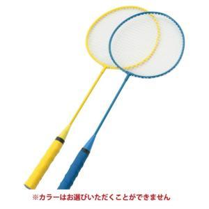 カシマヤ KASHIMAYA おもちゃ バドミントン&ディスクセット 9673|himaraya