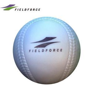 フィールドフォース FIELDFORCE 野球 トレーニングボール インパクトパワーボール Cサイズ 300g FIMP-680C|himaraya|02
