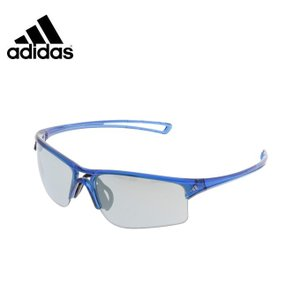 アディダス ウインターアクセサリー サングラス メンズ レディース RAYLOR L テーラー エル A404016068 adidas od|himarayaod
