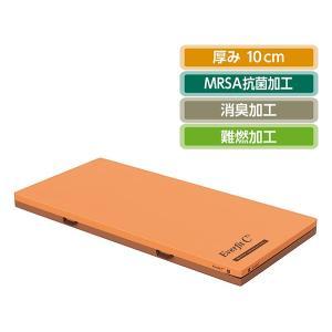 単品購入 パラマウントベッド エバーフィットC3マットレス(清拭タイプ)[91cm幅×191cm長]|himawari-kaigo