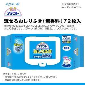 大王製紙 エリエール アテント 流せるおしりふき 72枚 H002970|himawari-kaigo