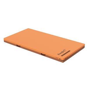 単品購入 パラマウントベッド エバーフィットC3マットレス(清拭タイプ)[91cm幅×191cm長] KE-611SQ|himawari-kaigo