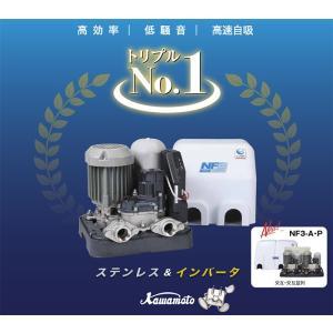 川本ポンプ NF2-150SK カワエース 家庭用浅井戸ポンプ 150W/100V 即日出荷|himawaridensetsu