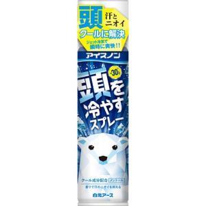 アイスノン 頭を冷やすスプレー 95g|himejiryutsuu