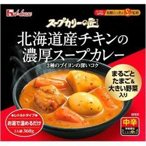 ハウス スープカリーの匠 北海道産チキンの濃厚スープカレー 360g ×24個セット|himejiryutsuu