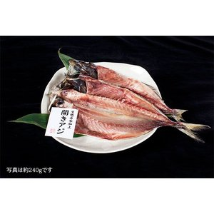 特選・開きアジ 黒部名水仕上げ(全長20cm完全保障)|himono-takaokaya|02