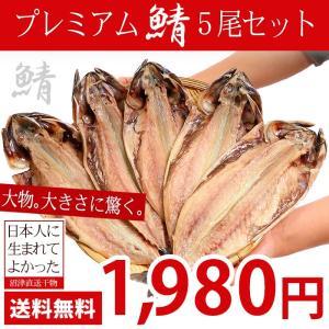 干物 鯖 送料無料 サバ 干物 5枚セット さば ギフト 肉厚 大きすぎる 規格外