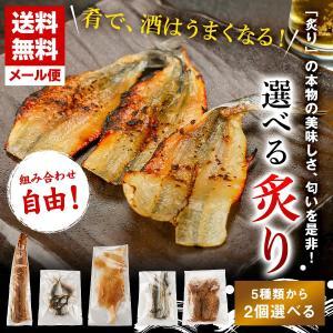 干物 乾物 選べる2種類 炙り 5選 [ エイヒレ たこ あじ さより 穴子 ] 送料無料 えいひれ するめ 蛸 タコ アナゴ 一本干し 開き みりん干し メール便|himono-ya