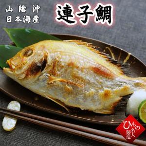 連子鯛丸干し(れんこだい) 干物(単品) 山陰沖日本海産