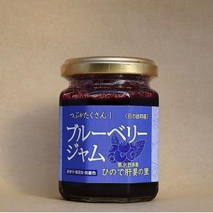 日の出町産のブルーベリーを使い、グラニュー糖とレモンで作った手作りジャムです。目に良いとされる成分を...