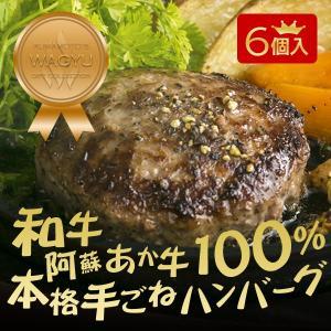 和牛ハンバーグのギフトセット 熊本県産和牛 阿蘇あか牛の本格手ごねハンバーグをお取り寄せ 120g×6個入り(ヒノマルキッチンのあか牛ハンバーグ)