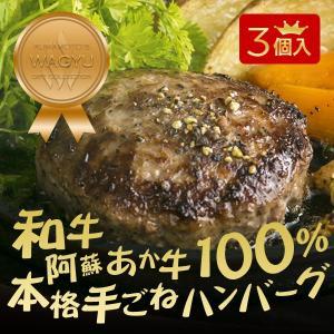 <お試し用>和牛ハンバーグ3個入り 熊本県産和牛 阿蘇あか牛の本格手ごねハンバーグ 120g×3個入り(ヒノマルキッチンのあか牛ハンバーグ)