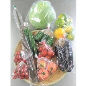 熊本県産野菜セット|hinomarudept